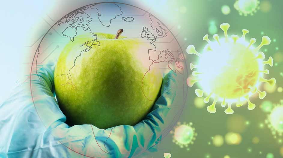 COVID19 Disrupts Global Food Supply Chains: Impact & Possibilities